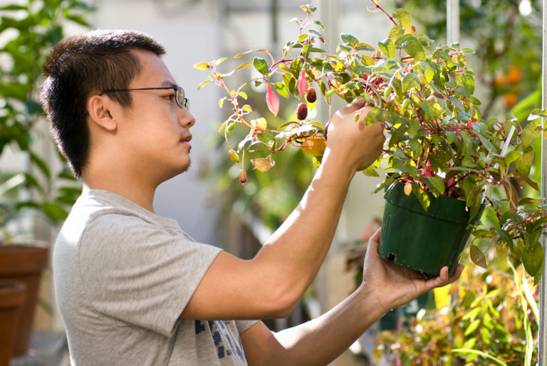 A student is holding a Fuschia plant while standing in a greenhouse.