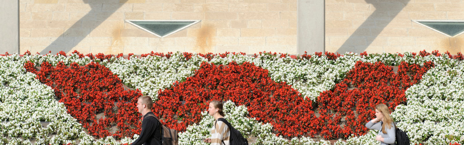 "Students walk past a red and white flowerbed in the shape of a ""W""."