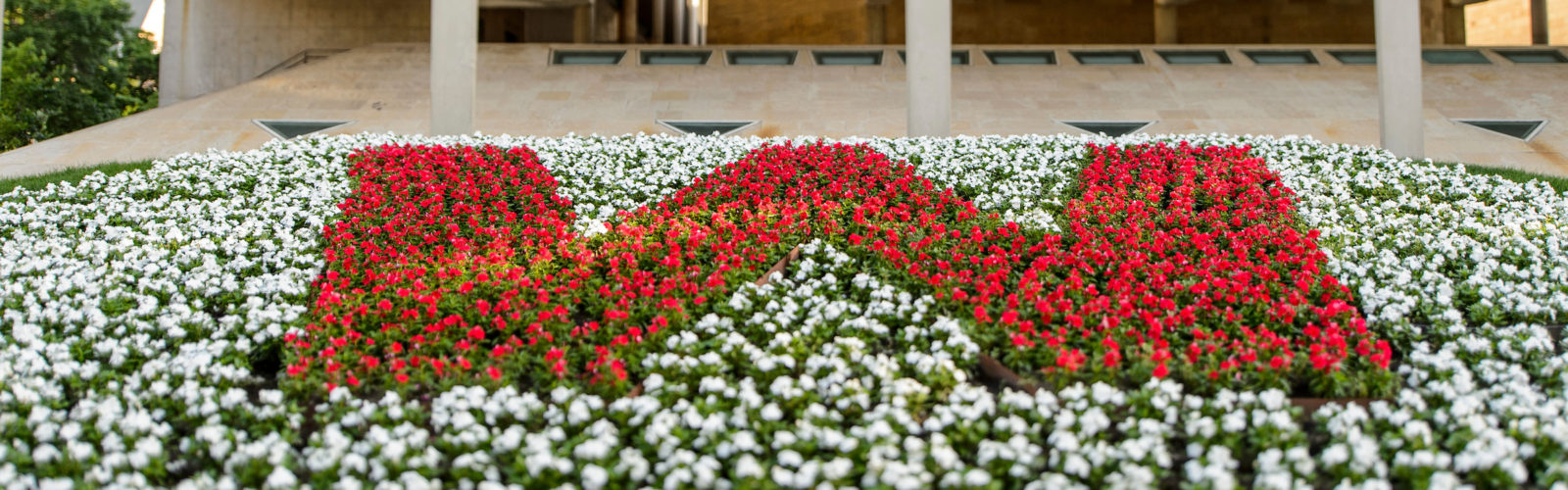 "A flowerbed of white and red flowers creates a ""W"" shape."